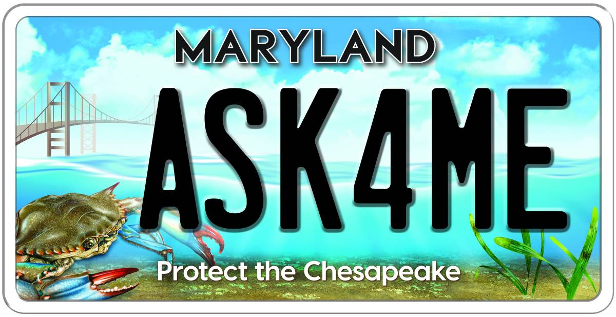 maryland unveils newest chesapeake bay license plate
